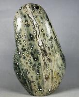 Collection ! Amazing Orbicular Ocean Jasper Agate Small Druzy Slab Reiki Stone