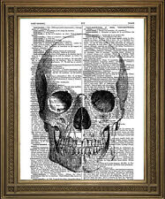 Page de livre dictionnaire vintage print: mort Crâne Antique Plume et encre art design
