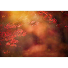 7x5ft Backdrop Abstract Autumn Forest Red Maple Leaf Photography Prop Background