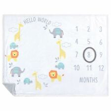 Hudson Baby Boy and Girl Monthly Milestone High Pile Blanket, Hello World