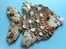Sea Shell Fish- Wall Sculpture- Artist Created-Coastal Nautical Home Decor