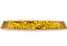 künstliche Seidenblumen Orchideen gelb / braun 4 Zweige 100 Cm Dekoration Top