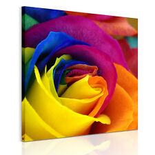 US STOCK Canvas Prints Wood FRAMED Colorful Rose Flowers HD Wall Art Pictures