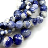 "Natural Sodalite Round Loose Beads 15"" Strand Blue white 4mm 6 8 10 12 Wholesale"