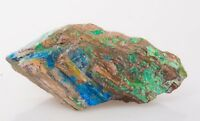 Rarest ! XL Natural Colla Petrified Wood with Chrysocolla, Sulfur and Azurite