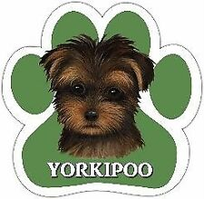 Yorkipoo Mixed Breed Dog Paw Vinyl Car Uv Coated Magnet 13125-127 Use on Locker