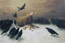 Anguish Sheep over lamb black crows  by August Friedrich Schenck vintage art