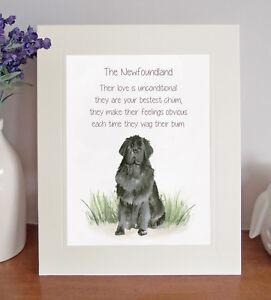 Newfoundland BESTEST CHUM Novelty Dog Poem 8 x 10 Picture/10x8 Print Fun Gift