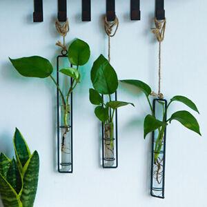Creative Wall Hanging Flower Vase Iron Glass Hydroponics Planter Pot Transp N`AU