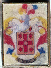 Heraldry PIN metallic del last name : TEN