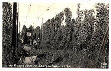 RPPC,Picking Hops by Machine in Eastern Washington,Ellis Photo,c.1945-50s