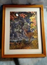 John Van Straalen Metallic Print Afternoon at Sanctuary Falls - Hidden Animals