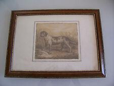 etching dog . Sauline 10 janvier 1861.Drawing 19th century