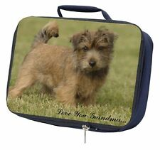 Norfolk-Norwich Terrier Dog Black Border Satin Feel Cushion Cover Wi AD-NT2-CSB