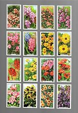 CIGARETTE CARDS. Gallaher Tobacco. GARDEN FLOWERS. (1938). (Complete Set of 48).