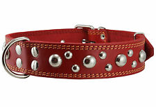 "Genuine Leather Dog Collar Studded 1.5"" wide 19-24"" neck Mastiff Rottweiler"