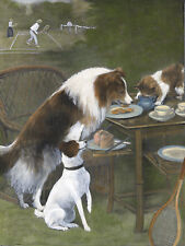 ROUGH COLLIE FOX TERRIER CAT STEAL TEA LOVELY DOG GREETINGS NOTE CARD