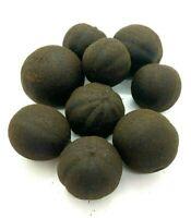 Lemon Black Persian Natural Whole Chamomile In Holy Land 50g  FF BLACK Organic