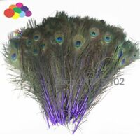Deep purple Peacock Feathers 16-18 inches Long 40-45cm 100 pieces per pack