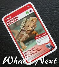 Woolworths<AUSSIE ANIMALS><Series 2 Baby Wildlife>CARD 16/36 LAND Bearded Dragon