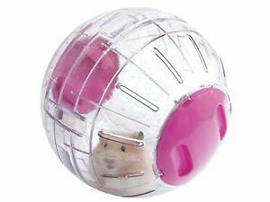 LARGE HAMSTER BALL (Clear with one coloured end cap)