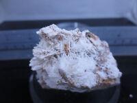 Cerussite, Australia, Miniature Sized Specimen #T251