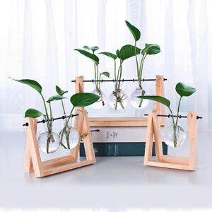 glass planter diy desktop bookshelf table decor bulb art vase with wooden stand