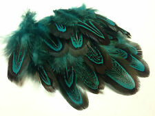 50 Aqua Blue Almond 3-10cm Pheasant Feathers Craft Millinery Wedding Decoration