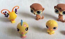 5 Littlest Pet Shop Animals Butterfly Chick Parakeet & Meerkats Lot Animal Toy