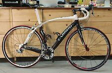 Bici corsa Carrera Phibra Carbon Shimano Durace