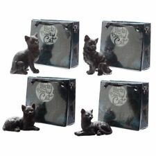 Lucky Black Cat in Mini Gift Bag - Assorted Designs - BNWT