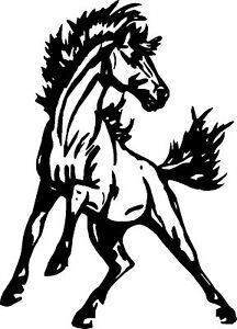 Rearing Horse 30 inch Sticker / Decal for Horsebox