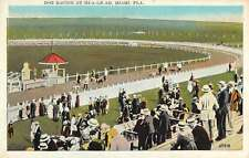 Miami Florida Hialeah Dog Race Track Antique Postcard K54674