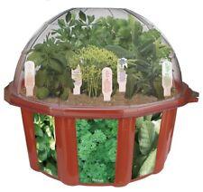 Herb Dome Terrarium Home Growing Kit Indoor Plants Seed Garden Vegetables Pot