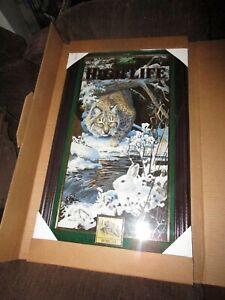 1997 Miller High Life Beer Mirror Sign Bobcat Mint In Box Scott Zoellick