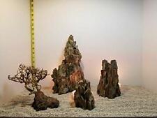 8.75 lbs Ohko Dragon Stone Aquascape ADA Aquarium WYSIWYG