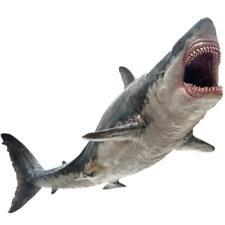PNSO Megalodon Prehistoric sharks Dinosaurs Model Figure Rare Version Toys