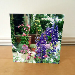Blank Greetings Cards Flower Delphiniums Birthday Notelet All Occasions Notecard