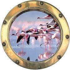 Adesivi oblò decocrazione Fiammingo rosa 60x60cm 1441