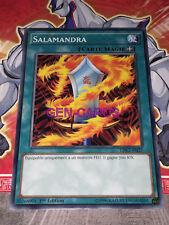 Carte Yu Gi Oh SALAMANDRA LDK2-FRJ27 x 3