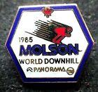 Ski Pin - 1985 Molson World Downhill Panorama
