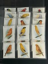 More details for cigarette cards aviary & cage birds large 1935 full set