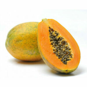 Solo Papaya from Canary Islands - 10+Seeds - Semillas - Graines - Samen - Exotic