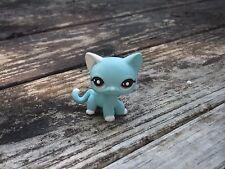 Littlest Pet Shop Custom OOAK Short Hair Kitty Cat ~Frost Bite~ Winter Custom