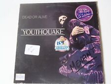 33 TOURS LP  DEAD OR ALIVE YOUTHQUAKE  1985 EPIC EPC 26420