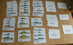 Full Set of 50 Cast Cards for Subbuteo Angling Board Game Spares Parts