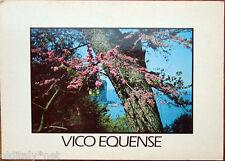 1980 VICO EQUENSE Penisola Sorrentina-ediz.La Fenice photo Franco Mario Savarese