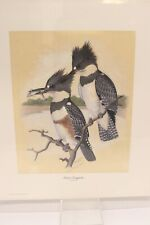 Kingfisher Print Earl Henry Numbered 15x18 Lithograph Bird Ready To Frame