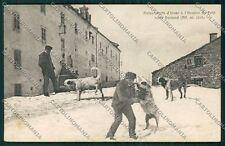 Aosta Piccolo San Bernardo Cane cartolina QQ5933