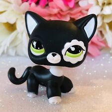 Authentic Littlest Pet Shop RARE Black & White Cat Blythe Short Hair Cat #2249